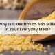 Why Is It Healthy to Add Millet in Your Everyday Meal?