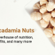 Macadamia nuts: A powerhouse of nutrition, benefits, and many more
